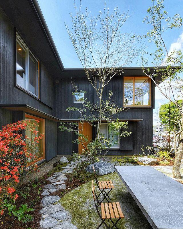 #大泉寺の家 ワークショップで庭が完成しました。ステキな春風がそよぎがしました#ts_niwa #荻野寿也景観設計#みのわ建築設計工房#雑木の庭#庭 #garden