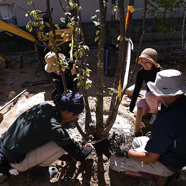 2018@ティーズガーデンスクールアドバンス第2期現場実習 森に住まう実際に植栽の向きや位置決めの手伝いや地下支柱の設置も行ったことで、今までただただ感動してきた雑木の庭が出来上がっていく情景を見れたことが大変勉強になりました。地下支柱は最後の方には我々生徒だけで行えるほどになったので卒業後にかならず実践して見たいと思いました。まずはとにかく高木の大きさに驚いたという点です。現場到着後には横たわっているモミジやジュンベリーを見て巨人が寝ているかのような存在感を感じ、こんなに植えたら森どころか山になってしまうのでは?と思っていました#新築一戸建て #設計士 #雑木の庭 #garden #工務店 #庭 #雑木 #エクステリア #ガーデン #庭づくり