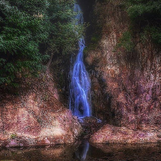 #滝 #四国 #高松 #栗林公園 #写真好きな人と繋がりたい #写真撮ってる人と繋がりたい